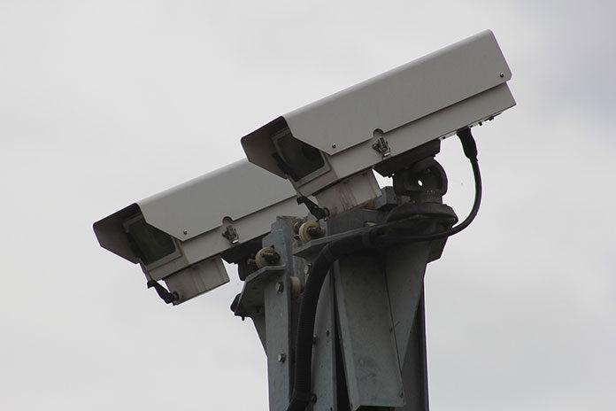 Czym są i do czego mogą przydać się kamery leśne?